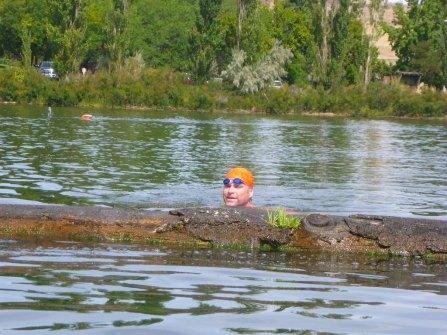 037-swimsnake-1230983