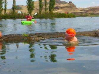 046-swimsnake-1240027
