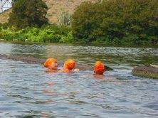 057-swimsnake-1240071