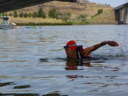 083-swimsnake-1240171