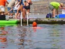 087-swimsnake-1240186