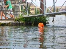 095-swimsnake-1240218