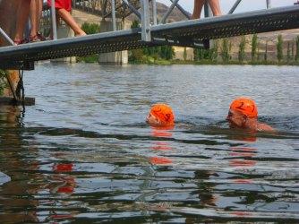 101-swimsnake-1240242